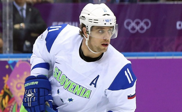 Image result for anze kopitar team europe