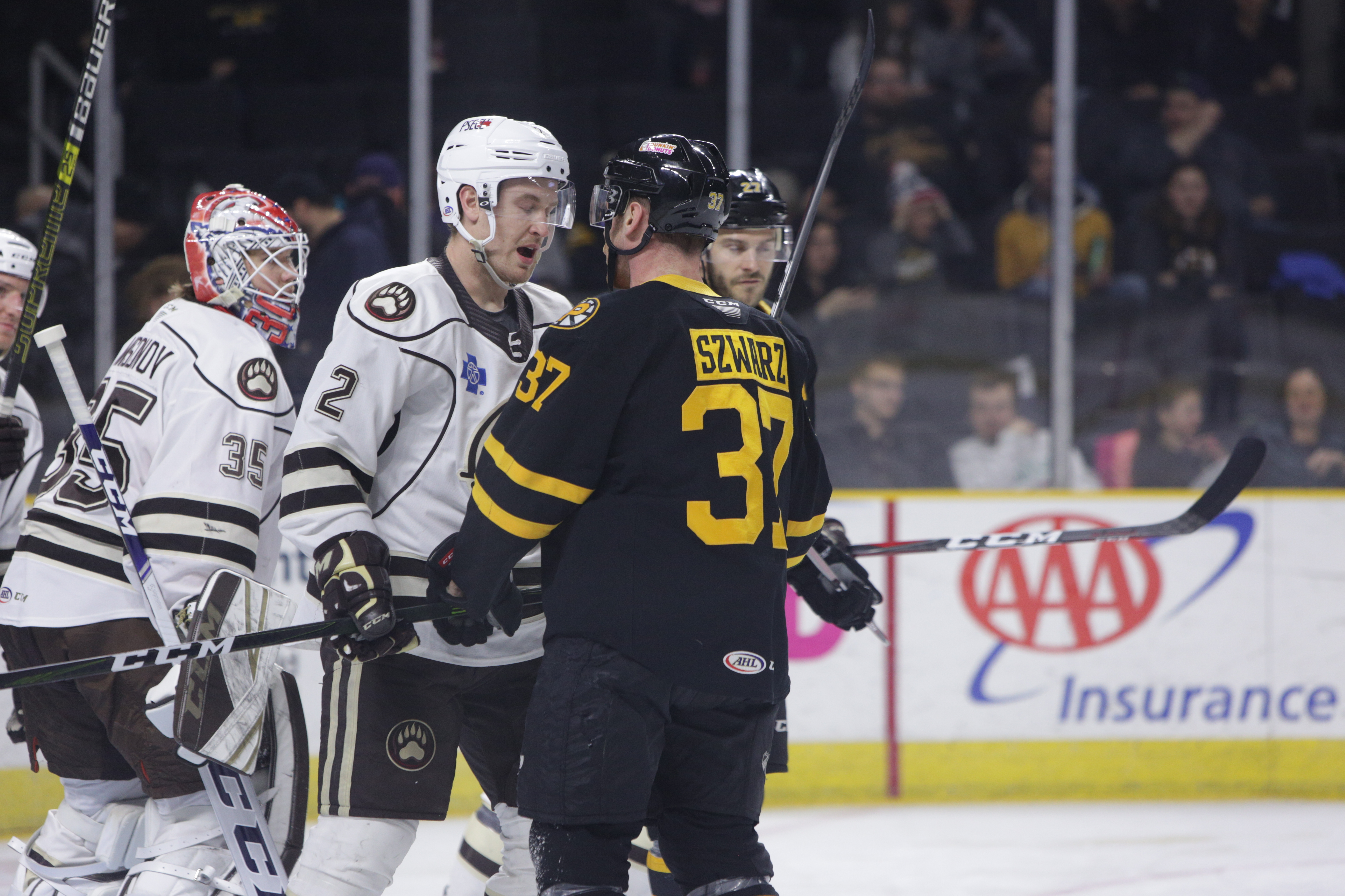 5383ab27d Bears Fall To Bruins 4-3 in Overtime  Riley Barber Scores Two Goals ...